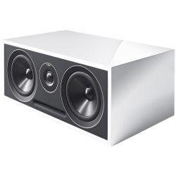 - Acoustic Energy 307